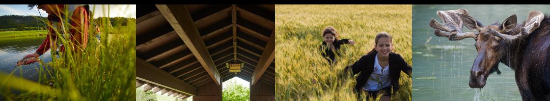 Sun West Ranch, Madison River fishing, horseback riding, hiking and wildlife
