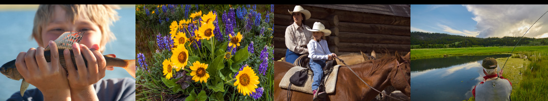 Sun West Ranch, Madison Valley, Montana: fishing, wildflowers, horseback riding, fly fishing